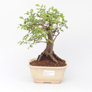 Keramická bonsai miska CHAMELEON