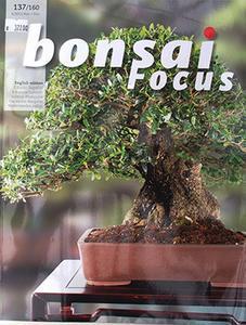 Bonsai focus č.137