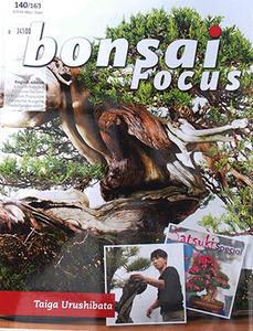 Bonsai focus č.140