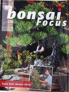 Bonsai focus č.141