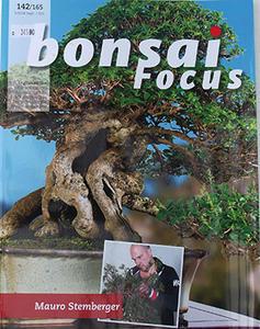 Bonsai focus č.142