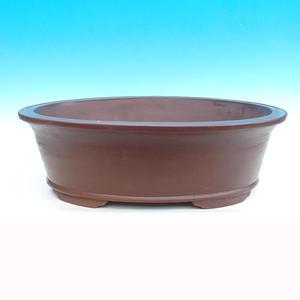 Bonsai miska