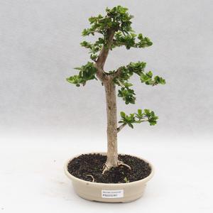 Keramická bonsai miska 18,5 x 13,5 x 3,5  cm, barva hnědorůžová