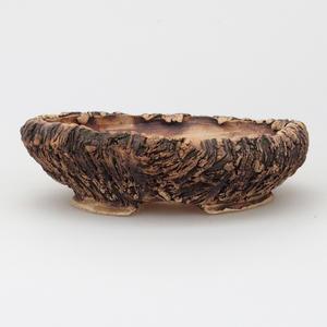 Izbová bonsai - Čaj fuki