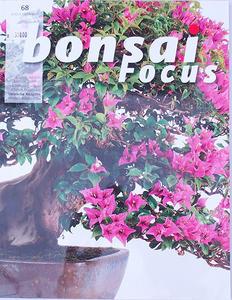 Bonsai focus - německy č.68