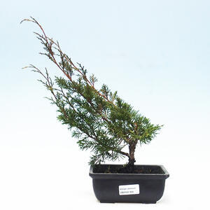 Keramická bonsai miska 11 x 11 x 12 cm, barva šedá