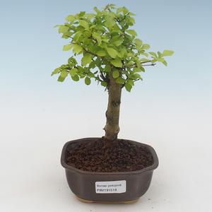 Keramická bonsai miska 22 x 16 x 2,5  cm, barva šedá