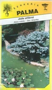 Jedľa strieborná -Abies nobilis