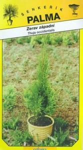 Tuja západná -thuja occidentalis