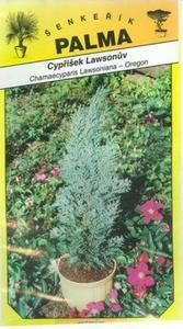 Cypřišek Lawsonův - Chamacyparis Lawsoniana