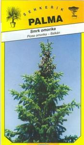 Smrek omorikový - Picea omorika