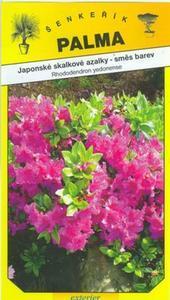 Japonské skalkové azalky - Rhododendron yedonense