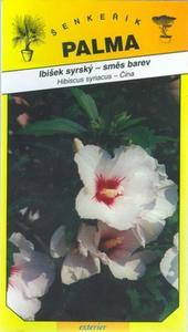 Ibišek syrský (směs barev) - Hibiscus syriacus