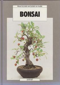 Bonsai - Anne Swinton