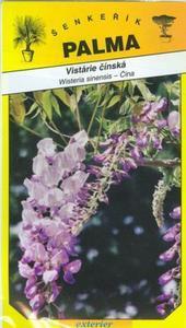 Vistárie čínská - Wisteria sinensis