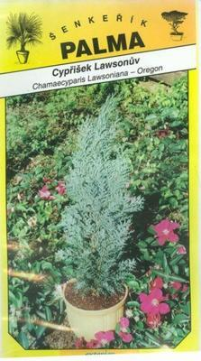 Cypruštek Lawsonov - Chamacyparis lawsoniana