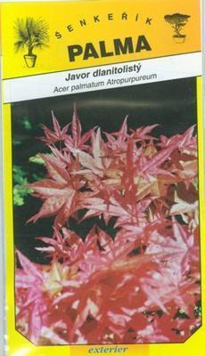 Javor dlaňolistý - Acer palmatum Atropurpureum