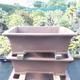 Bonsai miska 68 x 53 x 22 cm - 1/5