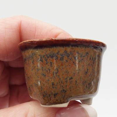 Mini bonsai miska - 2