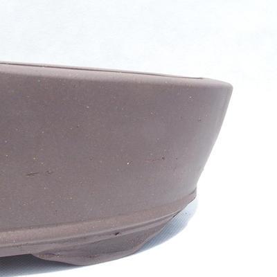 Bonsai miska 31 x 20 x 7 cm - 2