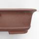 Vonkajší bonsai -Malus halliana - Maloplodé jabloň - 2/4