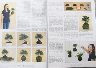 Bonsaje a Japonské záhrady sada 7 čísel 46,47,48,49,50,51,52 - 2