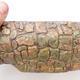 Keramická bonsai miska 2.jakost - páleno v plynové peci 1240 °C - 2/5