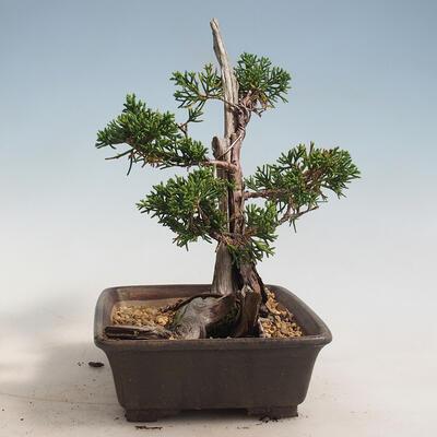 Bonsai miska 30,5 x 23,5 x 9,5 cm, barva šedá - 2
