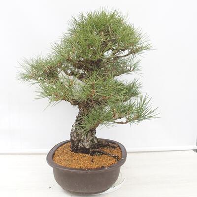 Bonsai miska 22,5 x 17 x 7 cm, barva šedobéžová - 2