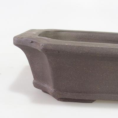 Bonsai miska 40 x 29 x 10 cm - 2