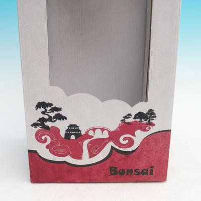 Dárková krabička - papírová - 2