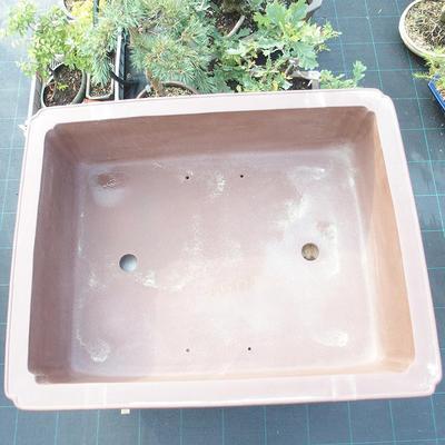 Bonsai miska 90 x 73 x 24 cm - 2
