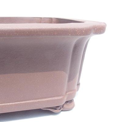 Bonsai miska 56 x 45 x 16 cm - 2