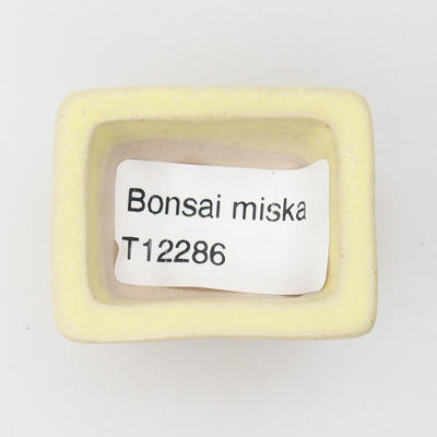 Mini bonsai miska - 3