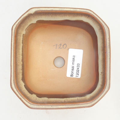 Bonsai miska 11 x 11 x 6,5 cm, barva hnědobéžová - 3