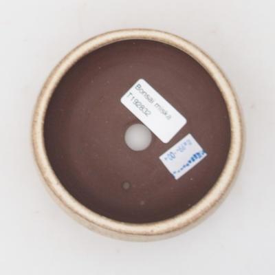 Keramická bonsai miska 10,5 x 10,5 x 4,5 cm, barva béžová - 3