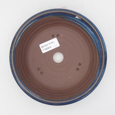 Keramická bonsai miska 17 x 17 x 4,5 cm, barva modrá - 3