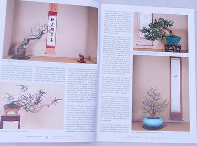 Bonsaje a Japonské zahrady č.48 - 3