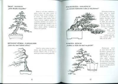 Kniha bonsai nejen v paneláku - 3