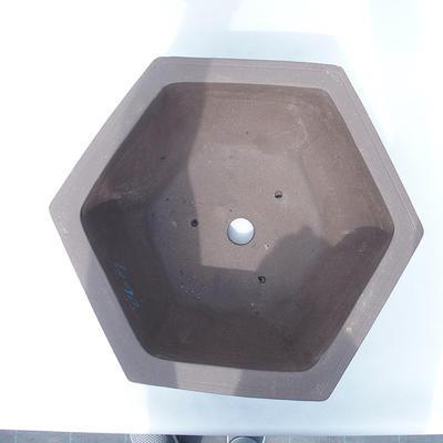 Bonsai miska 40 x 36 x 17 cm - 3