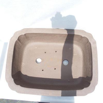Bonsai miska 51 x 39 x 16 cm - 3