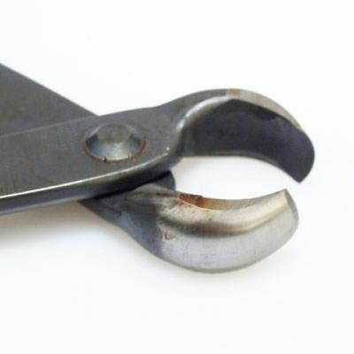 Bonsai náradie - Kliešte čelné 175 mm - 3
