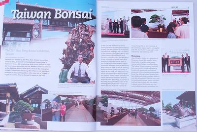 Bonsai focus - anglicky č.144 - 4