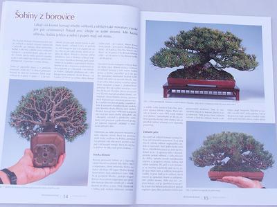 Bonsaje a Japonské zahrady č.48 - 4