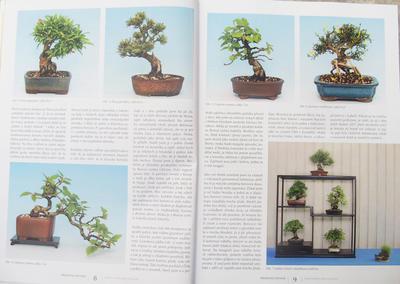 Bonsaje a Japonské záhrady sada 7 čísel 46,47,48,49,50,51,52 - 4