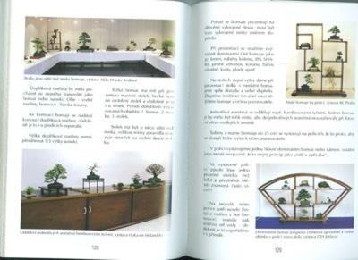 Kniha bonsai nejen v paneláku - 4