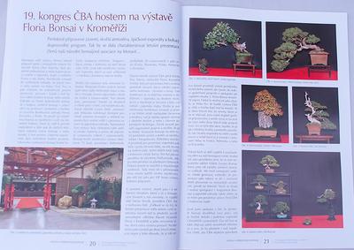 Bonsaje a Japonské zahrady č.48 - 5