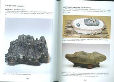 Kniha bonsai nejen v paneláku - 7