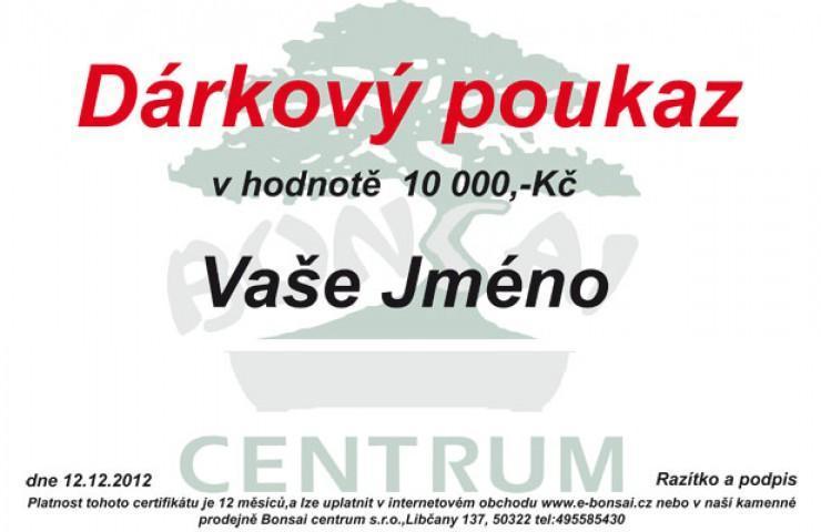 Dárkový poukaz 10 000 Kč
