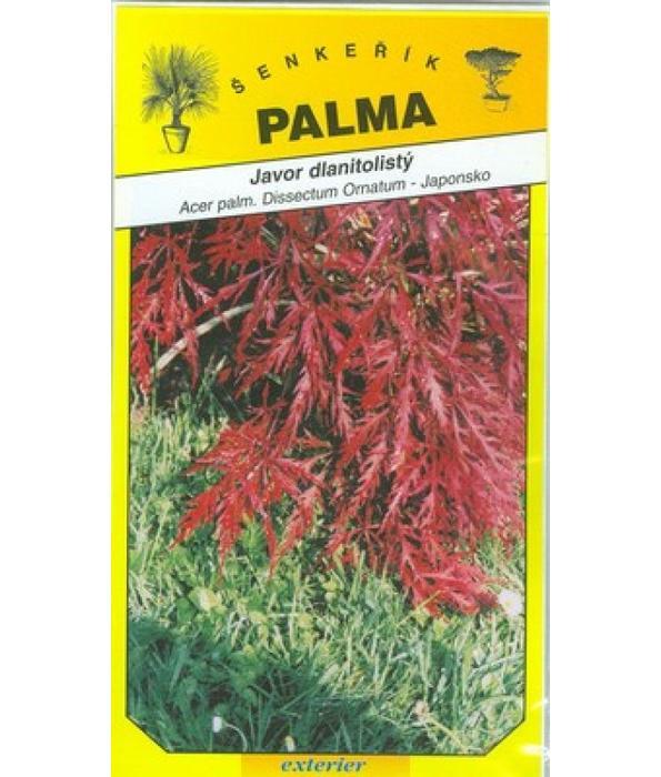 Javor dlanitolistý zpeřený- Acer palmatum Dissectu